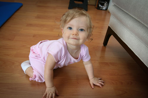 baby in hands and knees crawling position