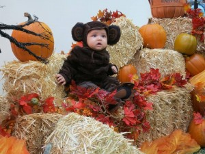 baby dressed in a monkey costume for Halloween